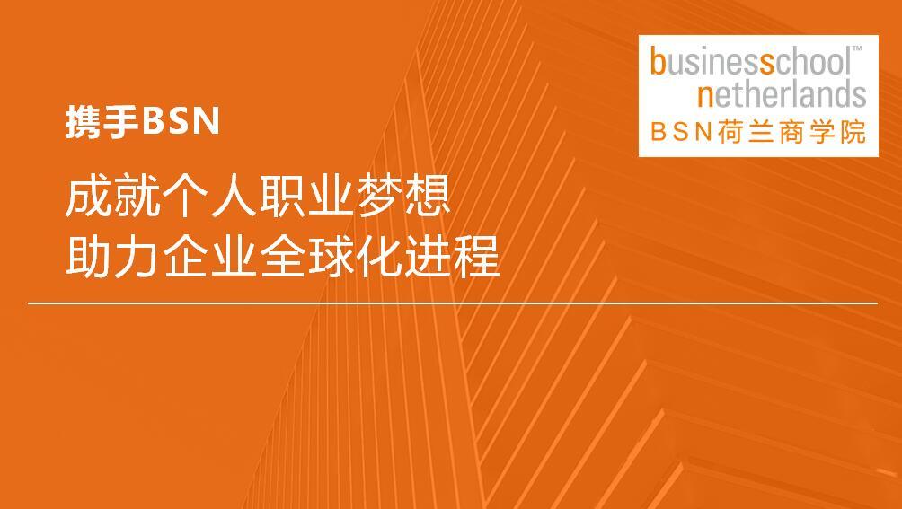 2017BSN荷兰商学院DBA招生简章